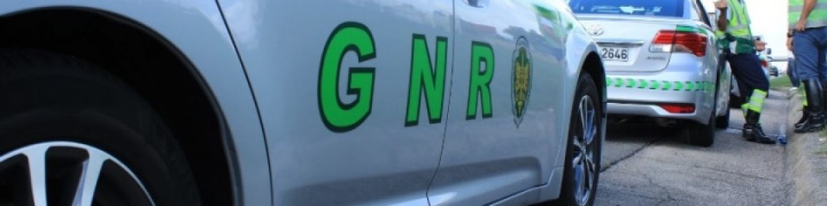 Atenção ao telemóvel! GNR e PSP passam em média 115 multas por dia