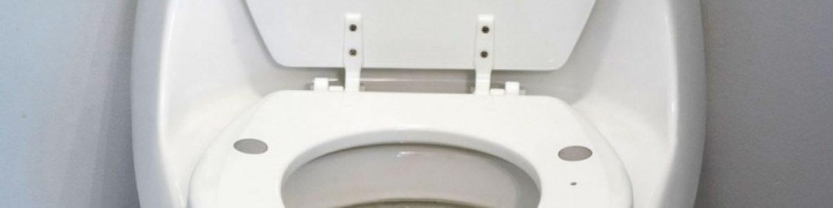 Assento de sanita de alta tecnologia pode detetar insuficiência cardíaca