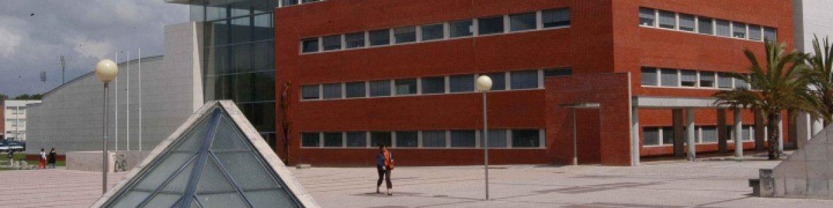 Universidade de Aveiro anuncia estágios para licenciados por… 120€